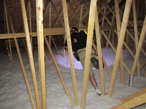 Attic inspection with Reuben