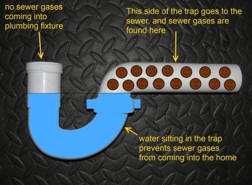 P-trap explained