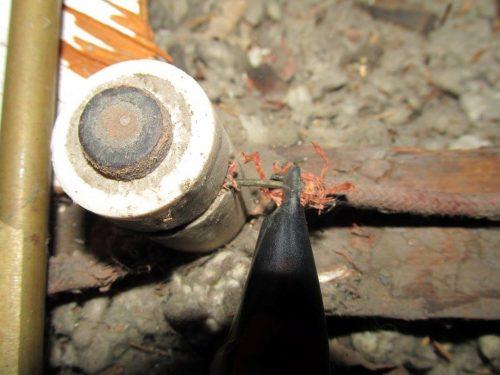 knob and tube wiring damaged