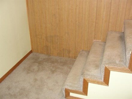 Stained paneling