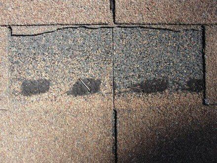 Wind damaged shingle