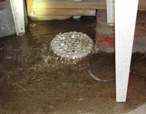 backed up floor drain