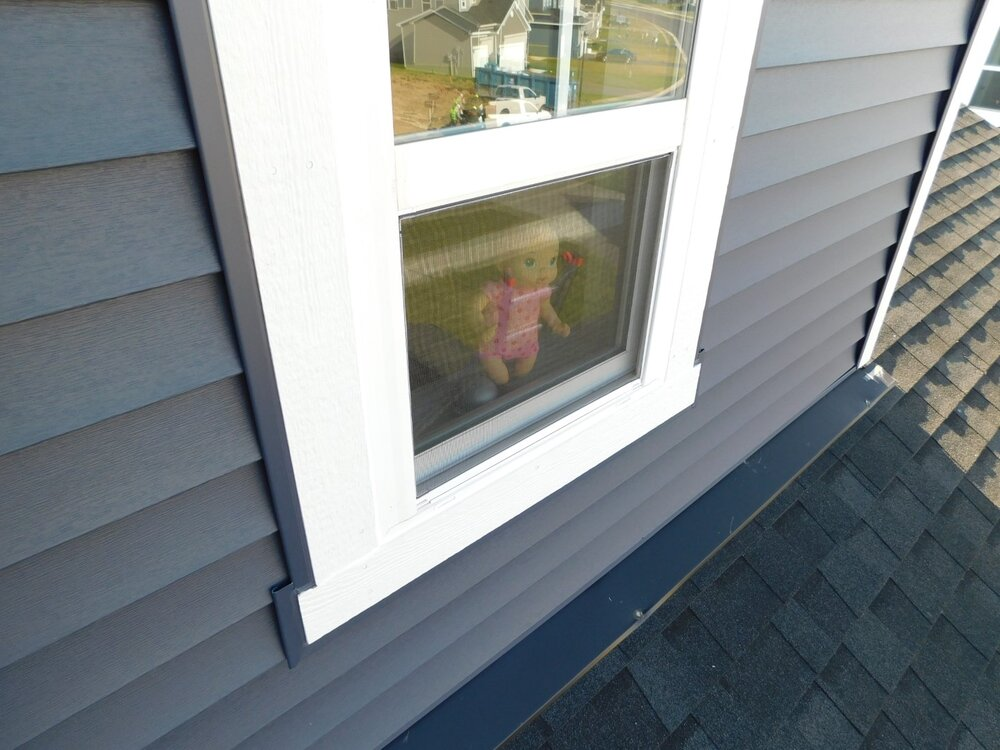 Doll in window.jpg
