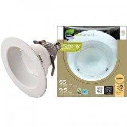 EcoSmart LED Floodlight