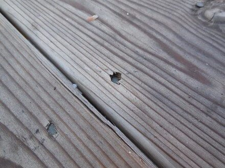 Exterior - overdriven nails at deck