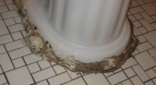 Toilet caulk